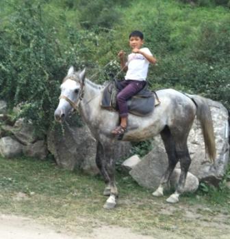 Altyn Arashan 75