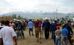 Karakol Cattle Market 3