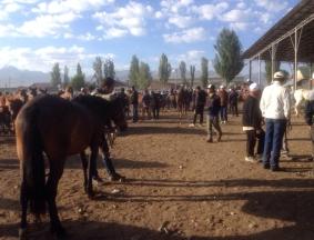 Karakol Cattle Market 7
