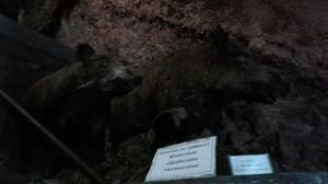 Museum Jeka 22 018-06-11 at 05.14.35