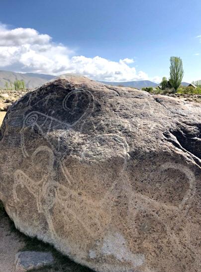 Museum of Petroglyphs 1