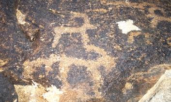 Museum of Petroglyphs 5