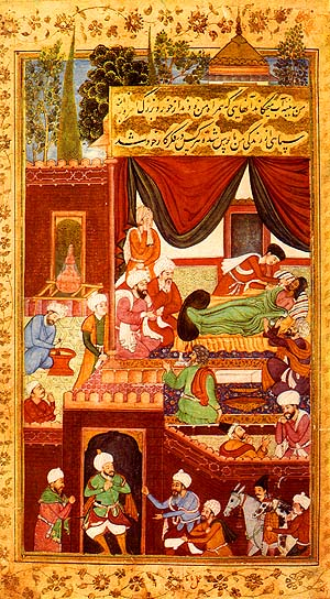 The Memoirs of Babur