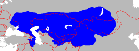 Turkic Khanate 2