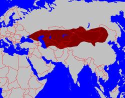 Turkic Khanate
