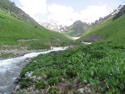 Chatkal Valley 3