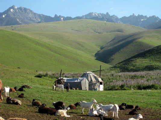 suusamyr valley 1